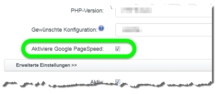 Anleitung Google Pagespeed